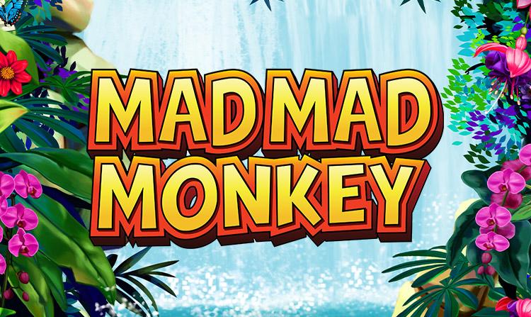 Mad Mad Monkey Slot logo Slots Baby